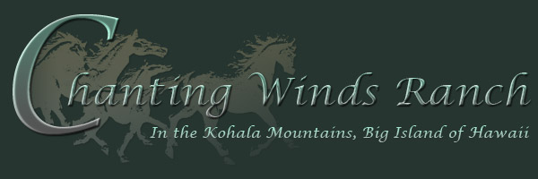 Chanting Winds Ranch Logo